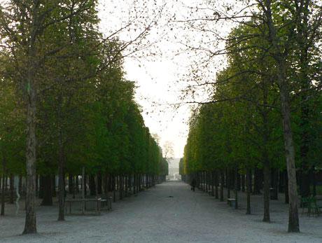 jardin des Tuileries – Paris