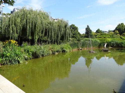 Lac dans la seconde moitié du jardin