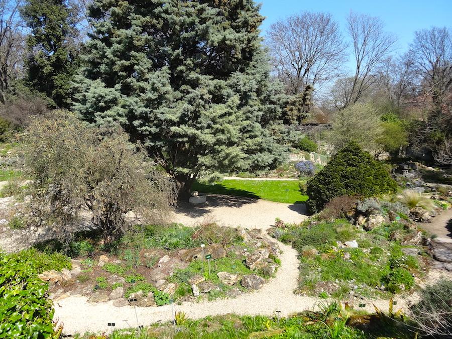 photo jardin alpin jardin des plantes