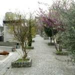 cimetière au pied de la butte montmartre
