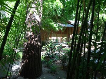jardin japonais 16e arrondissement