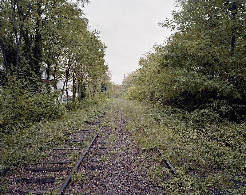 sentier nature