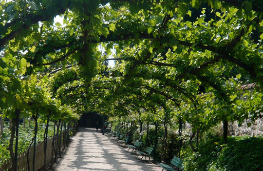 jardin romantique paris