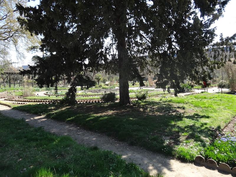 photo balade mouffetard jardin des plantes