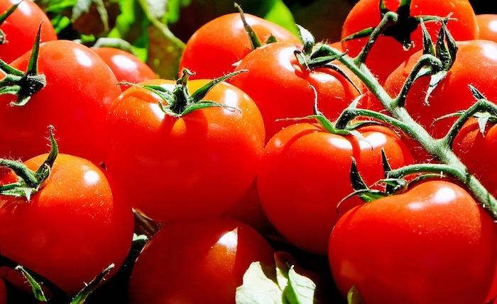 premieres tomates paris