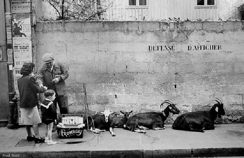 vendeur fromage chevre paris 1953