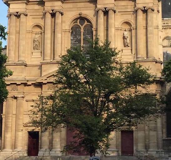 arbre remarquable saint gervais