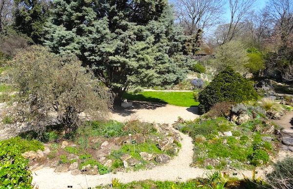 jardin des plantes jardin alpin